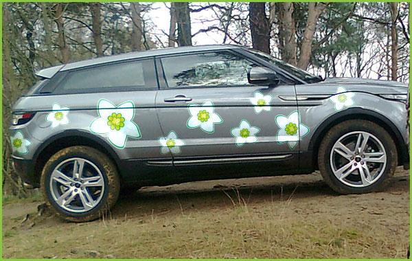 auto met bloemen-stickers